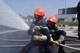 UDSP 35 - Journée départementale des JSP - PLEURTUIT - 28-05-2011